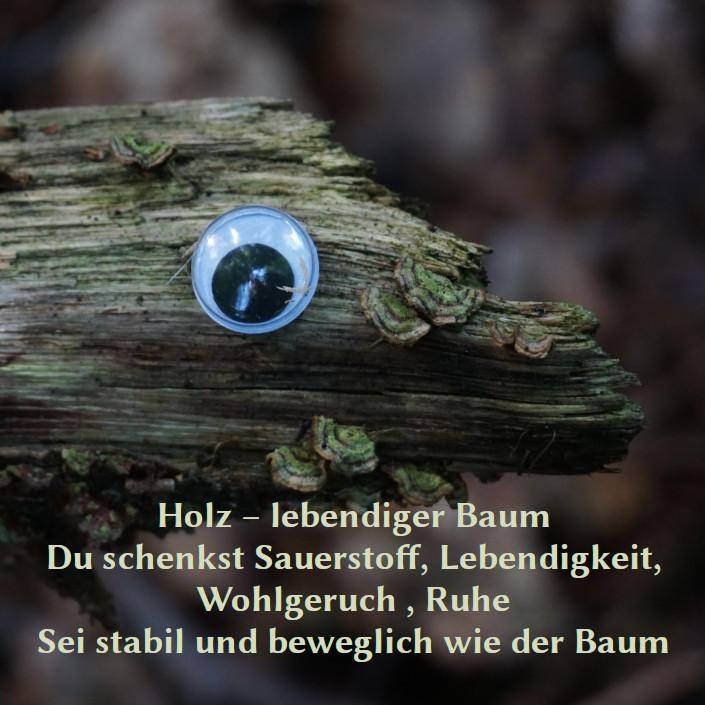 Foto von einem Baumstamm miz aufgeklebtem Auge und folgendem Text: Holz – lebendiger Baum Du schenkst Sauerstoff, Lebendigkeit, Wohlgeruch , Ruhe Sei stabil und beweglich wie der Baum