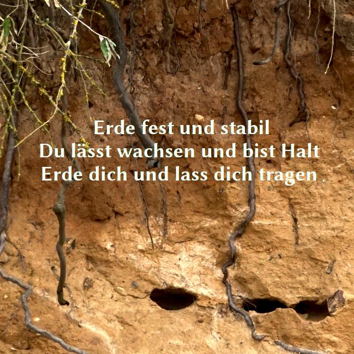 Foto einer Abbruchkante, Erde mit Wurzeln und folgendem Text: Erde fest und stabil Du lässt wachsen und bist Halt Erde dich und lass dich tragen