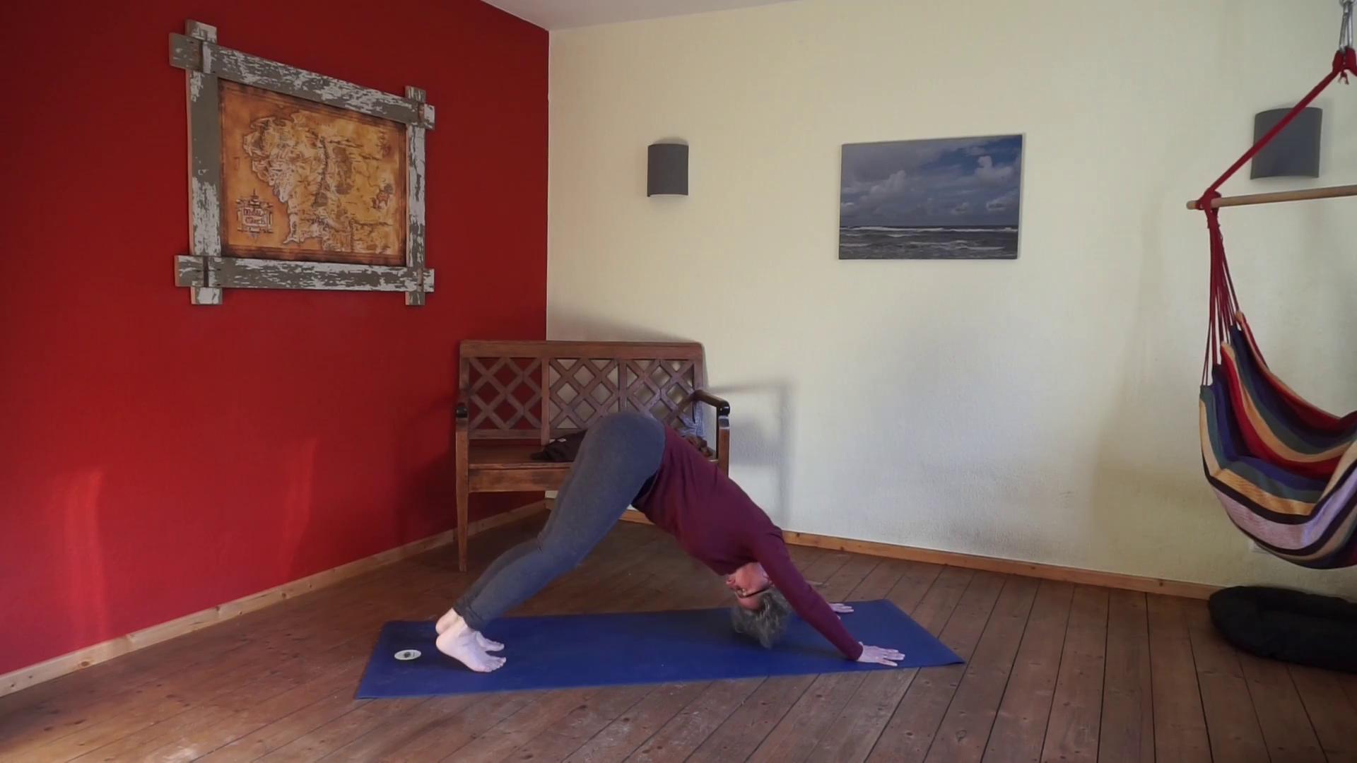 """Das Bild zeigt Susanne Koch in der Yogastellung """"Nach unten schauender Hund"""" Eine Umkehrhaltung im Yoga"""