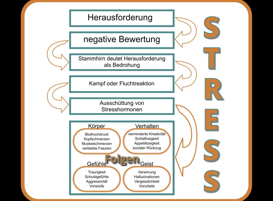 Stress und seine Bewältigung