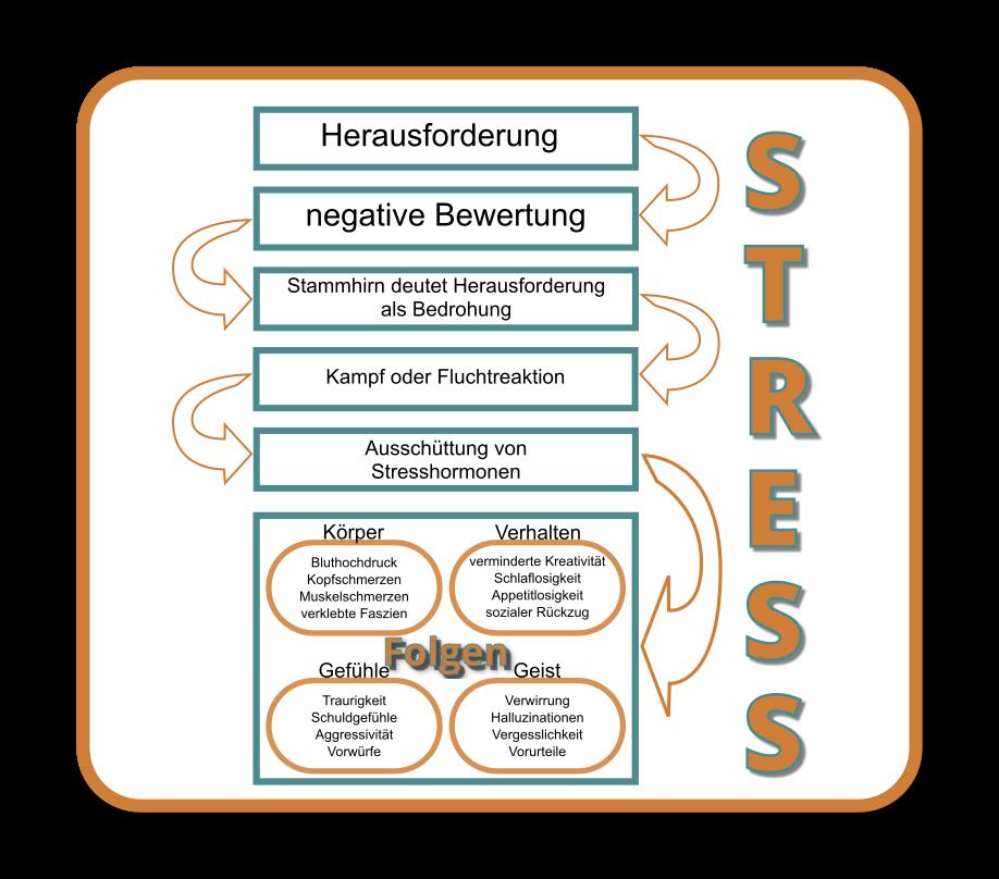 Die Grafik zeigt die Folgen von Stress, wenn wir diesen negativ bewerten. Die Auswirkungen beziehen sich auf den Körper, den Geist, die Gefühle und das Verhalten. Folgen können sein: Schlaflosigkeit, Müdigkeit, Aggression, Traurigkeit, Bluthochdruck, Muskel und Faszienschmerzen aber auch Verwirrung und Halluzinationen.