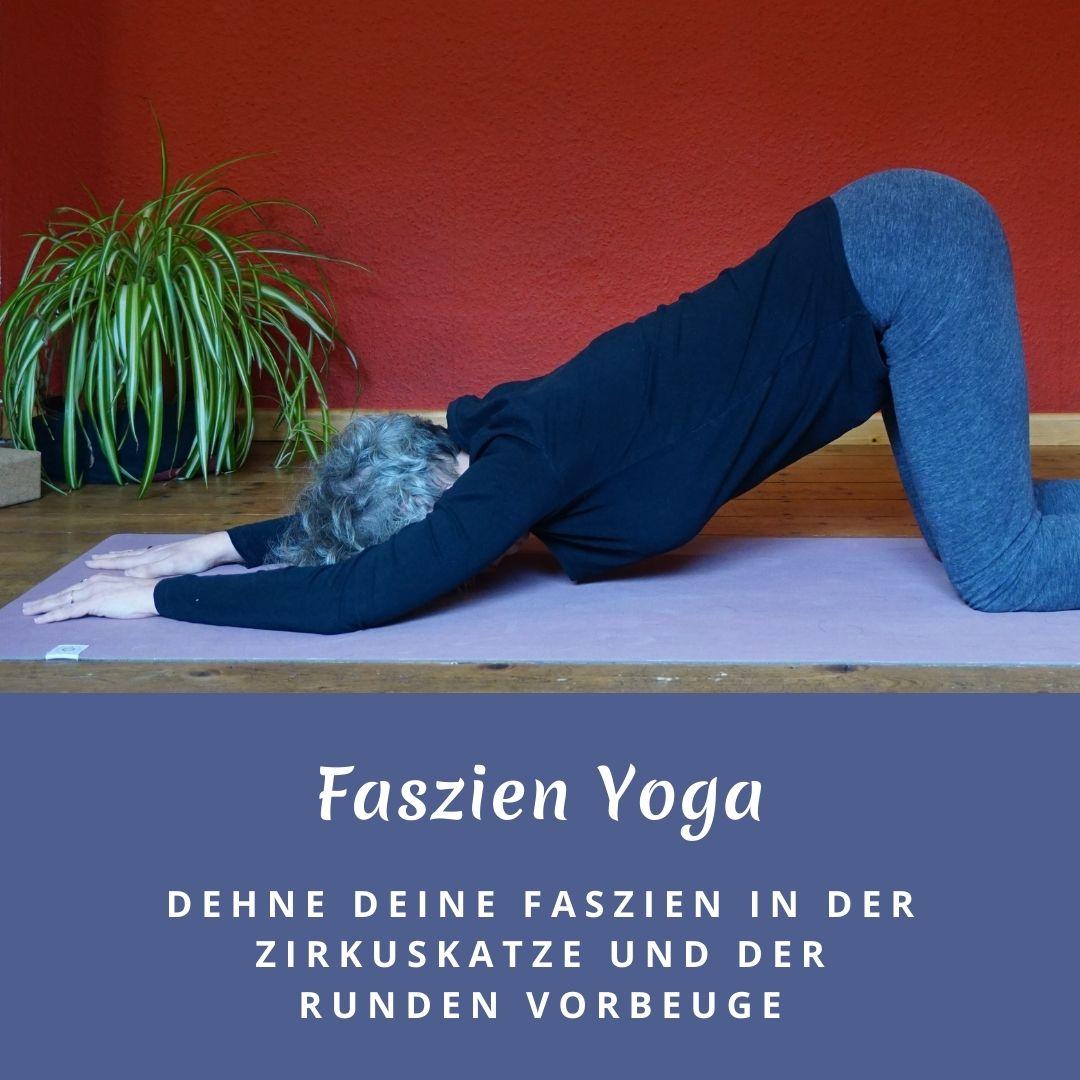 Susanne in Anahata Asana. Das Bild trägt die Aufschrift: Faszien Yoga - Dehne deine Faszien in der Zirkuskatze und der runden Vorbeuge